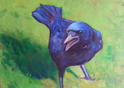 lawn crow
