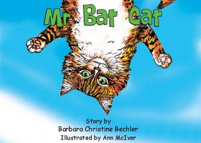 Mr Bat Cat
